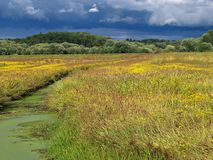 Great Meadows. Wildlife Refuge, MA. Some sun in a cloudy day Stock Photo
