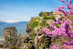 Great Meteoro Monastery on rocks  in Meteora  through the Branch of pink blossom Stock Images