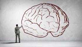 Great mind Stock Photos