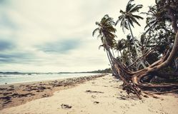 Great Mission Beach in Queensland Stock Image