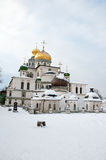 Great monasteries of Russia. Istra Stock Image
