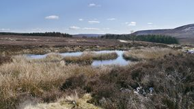 Great moorland view including pool of water. Widescreen of moorland near the Hambleton area over the Whitestones Ridge showing the moors in all their appeal royalty free stock photos
