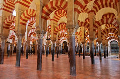 The great Mosque in Cordoba, Spain. The so called forest of pillars in the great mosque or mezquita in Cordoba, Spain Stock Photos