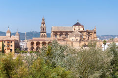 The Great Mosque of Cordoba Royalty Free Stock Image