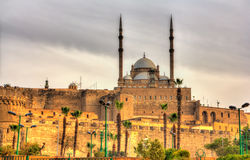 The great Mosque of Muhammad Ali Pasha in Cairo Stock Photography
