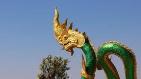 Great naga Green schale Stock Photography