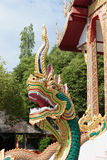 Great naga guarding the temple Stock Images
