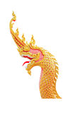 Great naga head Royalty Free Stock Image