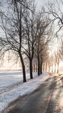 Great nice cozy winter landscape in the Netherlands Stock Images