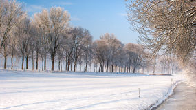 Great nice cozy winter landscape in the Netherlands Royalty Free Stock Photography