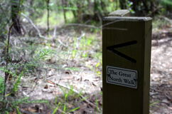 The Great North Walk. Bushwalking in Lane Cove National Park. Royalty Free Stock Photos