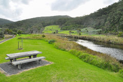 Great Ocean Road - Kennett River reserved park Royalty Free Stock Images