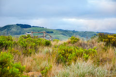 Great Ocean Road scenic drive of Melbourne Stock Photography