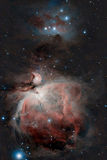 Great Orion Nebula. And Running Man Nebula captured with a telescope Royalty Free Stock Photography