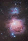 The great Orion Nebula. An astrophotography of the king deesky object of winter sky Royalty Free Stock Photography