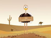 The great ostrich races. Illustration of the great ostrich races Stock Photo