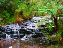 Great Otway National Park Waterfall Stock Images