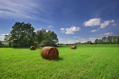 The Great Outdoors in the south. Haystack on farmland with trees in the background, Georgia Royalty Free Stock Images
