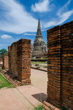 Great Pagoda. In Ayutthaya Historical Park.Public Place Stock Image