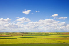 Great panoramic of Castilla fields at spring Stock Photo