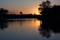 Great pelican sunset Stock Images