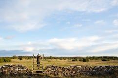 Great Plains stile Royaltyfria Bilder