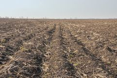Great plowed field. royalty free stock photography