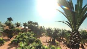 Great point of view on Sahara desert at sundown 3d rendering. Amazing night around african wasteland Stock Photos