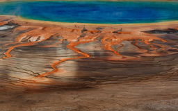 Great Prismatic Spring  Detail Stock Photography