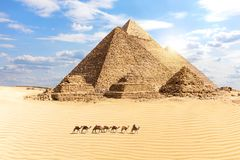 The Great Pyramids of Giza and a train of camels in the desert, Egypt. Africa ancient archeology architecture bedouin blue building cairo cheops chephren stock images