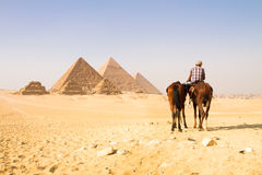 Great pyramids in Giza valley, Cairo, Egypt Stock Photography
