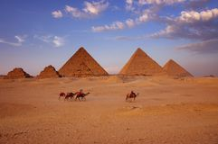 The great pyramids. In Giza Egypt stock images