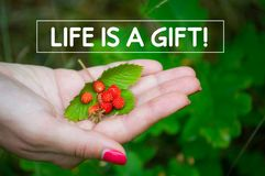 Life is a gift quote, super quality abstract business picture. Great quality work. On this picture you can see some business abstraction. Great to use for all royalty free stock photos