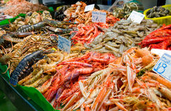 Great quantity of fresh seafood. On fish market in Barcelona, Spain Stock Photography