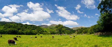 The great relax area - Lake District National Park Royalty Free Stock Photos