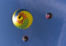 The Great Reno Balloon Race, from below vector illustration
