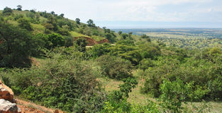 Great Rift Valley in Uganda Royalty Free Stock Photo