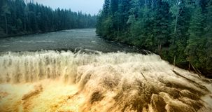 Great river in forest stock images