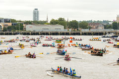 The Great River Race Royalty Free Stock Photo