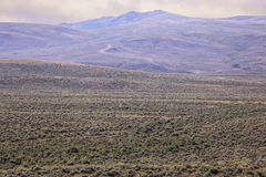 Great Sagebrush Plain. Vast sagebrush plain which provides winter forage for migrating deer, antelope, and elk Stock Photos