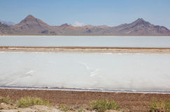 Great Salt Lake Desert. Utah, USA Royalty Free Stock Photos