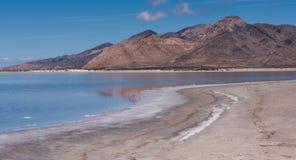 Great Salt Lake och Stansbury ö Arkivbilder