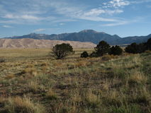 Great Sand Dunes National Park royalty free stock photography