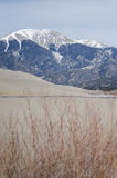 Great Sand Dunes National Park and Preserve with the alpine peaks of the Sangre de Cristo Mountains Stock Photography