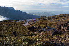 Great Savannah. Roraima and savannah view from Kukenan tepuy, Gran Sabana, Venezuela Royalty Free Stock Images