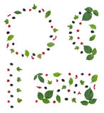Great set with four berry patterns Royalty Free Stock Photo