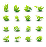 A great set of icons of stylized green leaves Royalty Free Stock Images