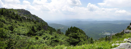 Great Smokey Mountain Panoramic. Beautiful vista summer day in the Great Smokey Mountains of North Carolina Royalty Free Stock Photography