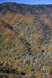 Great Smokey Mountains. The Great Smokey Mountains in the Fall Royalty Free Stock Image