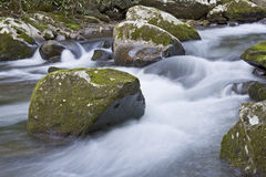 Great Smokey Mountains National Park Stock Image